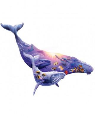 Puzzle contur SunsOut - Steve Sundram: Humpback Whale, 1.000 piese XXL (Sunsout-90348)