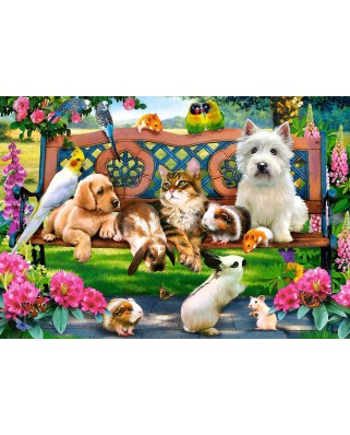 Puzzle Castorland - Pets in the Park, 1.000 piese (104406)