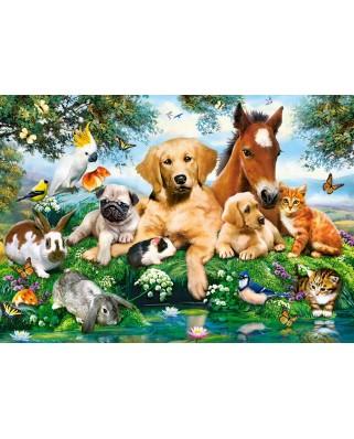 Puzzle Castorland - Summer Pals, 500 piese (53230)