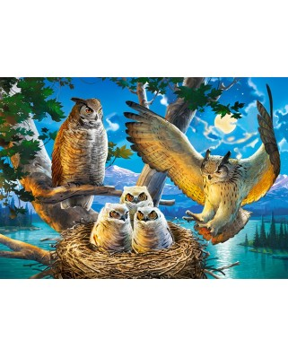 Puzzle Castorland - Owl Family, 500 piese (53322)