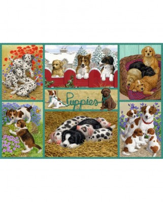 Puzzle Falcon - Happy Puppies, 500 piese (Jumbo-11219)