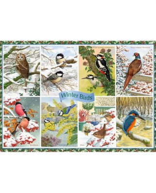 Puzzle Falcon - Winter Birds, 1.000 piese (Jumbo-11234)