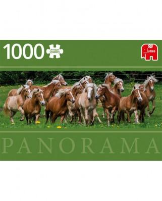 Puzzle panoramic Jumbo - Haflinger Horses, 1.000 piese (18827)