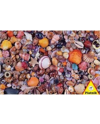 Puzzle Piatnik - Seashells, 1.000 piese dificile (5663)