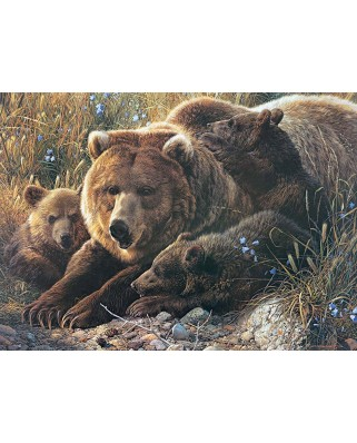 Puzzle Cobble Hill - Grizzly Family, 350 piese XXL (Cobble-Hill-54624)