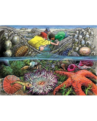 Puzzle Cobble Hill - Exploring the Seashore, 35 piese (Cobble-Hill-58805)