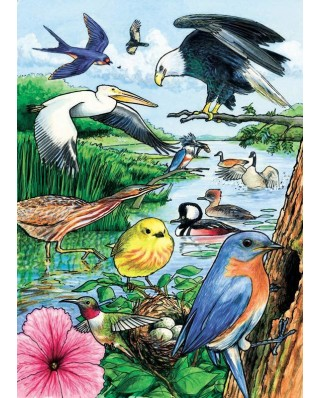 Puzzle Cobble Hill - North American Birds, 35 piese (Cobble-Hill-58809)