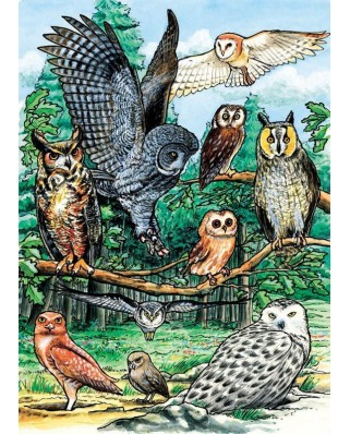 Puzzle Cobble Hill - North American Owls, 35 piese (Cobble-Hill-58810)