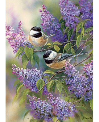Puzzle Cobble Hill - Chickadee Duo, 35 piese (Cobble-Hill-58877)