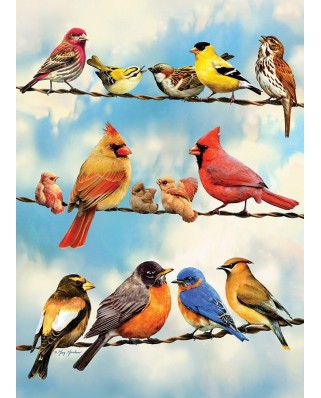 Puzzle Cobble Hill - Blue Sky Birds, 35 piese (Cobble-Hill-58888)