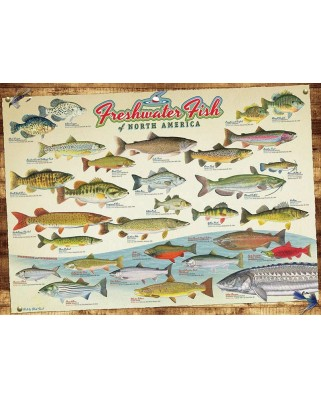Puzzle Cobble Hill - Freshwater Fish of North America, 1000 piese (Cobble-Hill-80094)