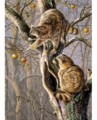 Puzzle Cobble Hill - Ringtail Raiders, 1.000 piese (Cobble-Hill-80192)