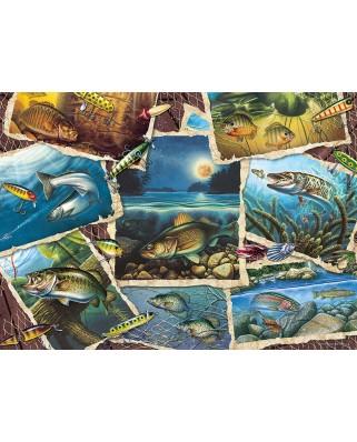 Puzzle Cobble Hill - Fish Pics, 1.000 piese (Cobble-Hill-80209)