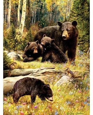 Puzzle Cobble Hill - Bears, 500 piese XXL (Cobble-Hill-85036)