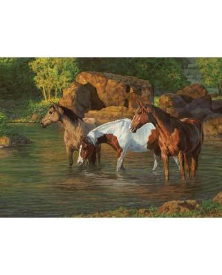 Puzzle Cobble Hill - Horse Pond, 500 piese XXL (Cobble-Hill-85051)