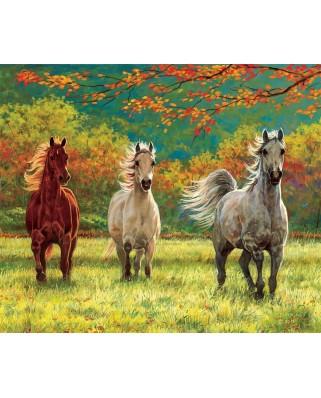Puzzle SunsOut - Autumn Meadow, 500 piese (Sunsout-44839)