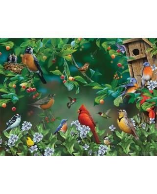 Puzzle SunsOut - Bird Festival, 300 piese (Sunsout-49046)