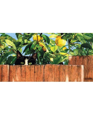 Puzzle panoramic SunsOut - Sylvester, 500 piese (Sunsout-50968)