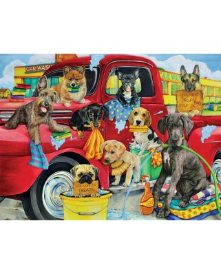 Puzzle SunsOut - Puppy Car Wash, 300 piese (Sunsout-63058)