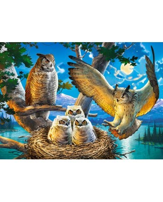 Puzzle Castorland - Owl Family, 180 piese (018437)