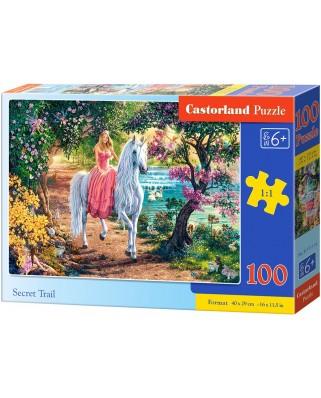 Puzzle Castorland - Secret Trail, 100 piese (111114)