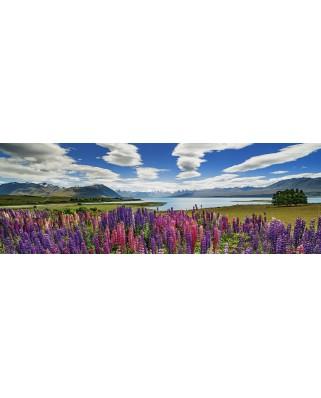 Puzzle panoramic Heye - Lake Tekapo, 1.000 piese (29902)