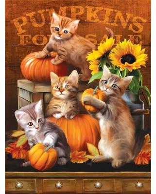 Puzzle SunsOut - Autumn Kitties, 300 piese XXL (28762)
