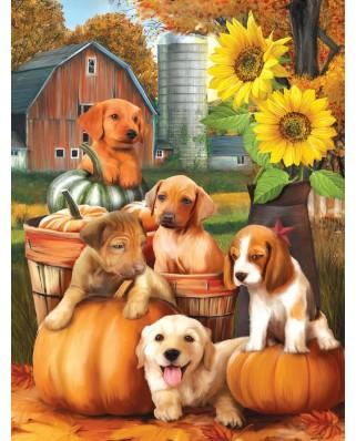 Puzzle SunsOut - Autumn Puppies, 300 piese XXL (28767)