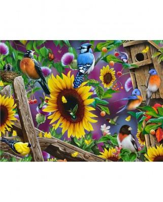 Puzzle SunsOut - Jerry Gadamus: Fenceline Birds, 500 piese (49049)