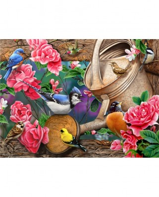 Puzzle SunsOut - Jerry Gadamus: Watering Can Birds, 1.000 piese (49016)