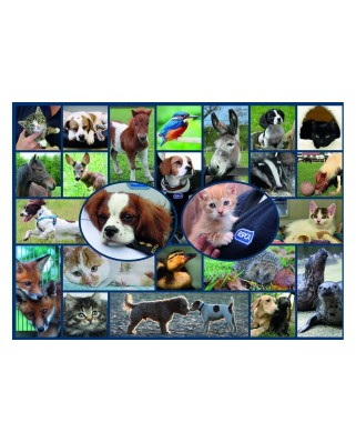Puzzle Gibsons - All Creatures Great & Small, 1.000 piese (61511)