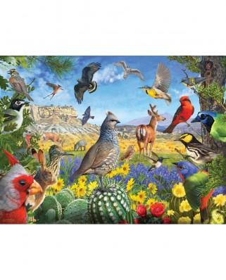 Puzzle SunsOut - R. Christopher Vest: Texas Birds, 1.000 piese (70939)