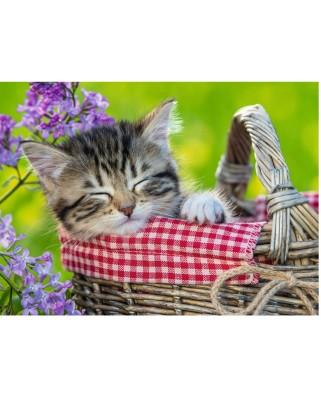 Puzzle Ravensburger - Kitten, 100 piese XXL (10539)