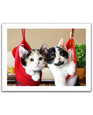 Puzzle din plastic Pintoo - Christmas kittens, 300 piese (H1387)