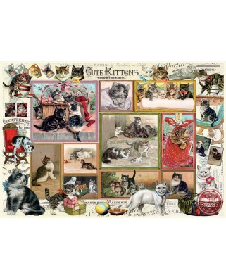 Puzzle Anatolian - Barbara Behr: Cute Kittens & Comical Dogs, 2x500 piese (P3611)