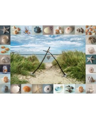 Puzzle Schmidt - Seashore Colllectibles, 1.000 piese (59631)