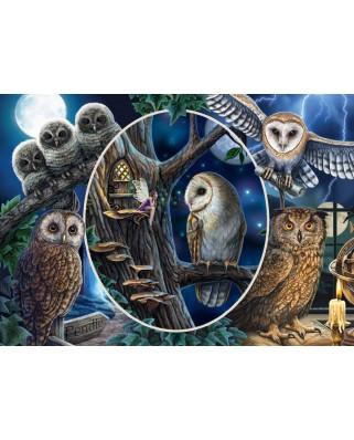 Puzzle Schmidt - Lisa Parker: Mysterious Owls, 1.000 piese (59667)