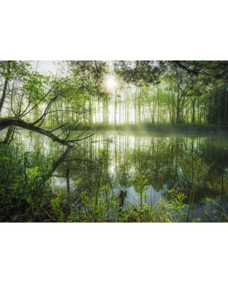 Puzzle Schmidt - Stefan Hefele: Homeland Jungle, 1.000 piese (59670)