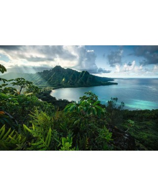 Puzzle Ravensburger - View of Hawaii, 5.000 piese (16106)
