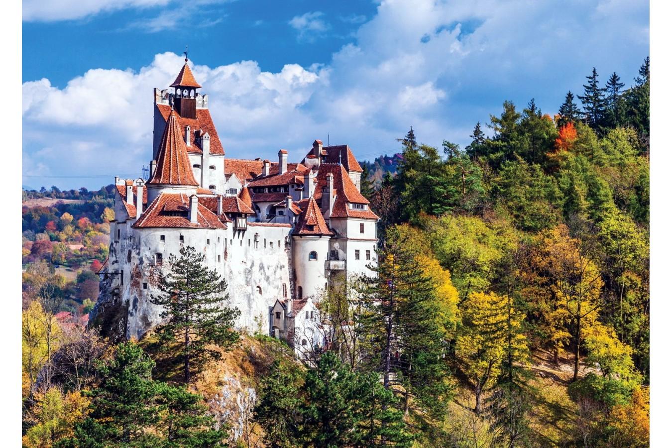 Puzzle TinyPuzzle - Castelul Bran, 99 piese (1008)