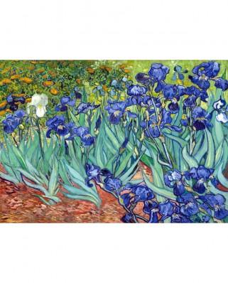 Puzzle TinyPuzzle - Vincent Van Gogh: Irises, 99 piese (1018)