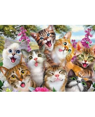 Puzzle Schmidt - Cat Selfie, 500 piese (58391)