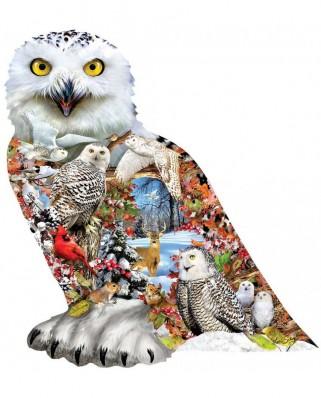 Puzzle contur SunsOut - Snowy Owl, 650 piese (Sunsout-96076)