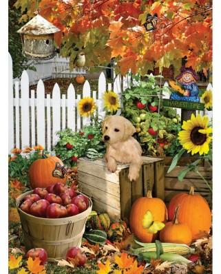 Puzzle SunsOut - Lori Schory: Harvest Puppy, 300 piese XXL (Sunsout-35140)