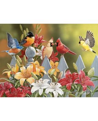 Puzzle SunsOut - William Vanderdasson: Birds on a Fence, 300 piese XXL (Sunsout-30479)