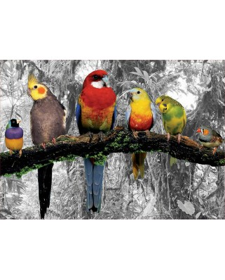 Puzzle de colorat Educa - Birds In The Jungle - Coloured B&W, 500 piese, include lipici (17984)