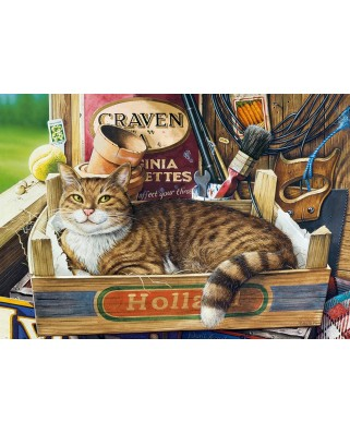 Puzzle Castorland - Fothergill, 500 piese (53476)