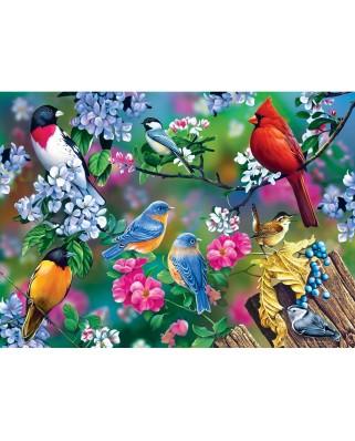 Puzzle Master Pieces - Songbird Collage, 1000 piese (Master-Pieces-31977)
