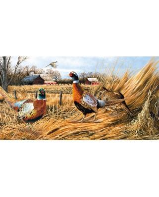 Puzzle SunsOut - Robert Schmidt: Pheasant Farm, 500 piese (Sunsout-49061)