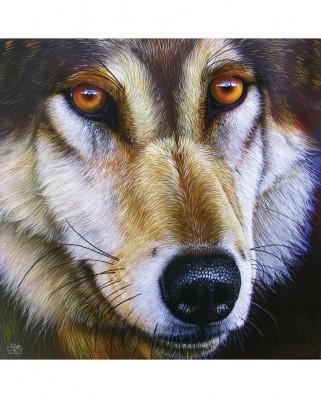 Puzzle SunsOut - Wolf Face, 1000 piese (Sunsout-58644)